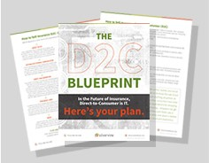direct-to-consumer-blueprint